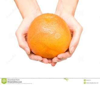 19 grapefruit.jpg
